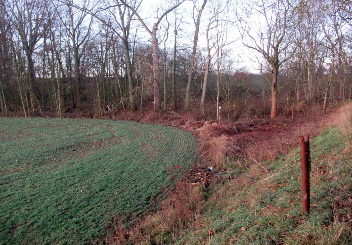 Deponie Außig, Gemeinde Cavertitz - Rückbau von zwei Grundwassermessstellen zur Umsetzung der Forderungen der Landesdirektion Sachsen im Landkreis Nordsachsen (SALKA-Nr.: 80100152)